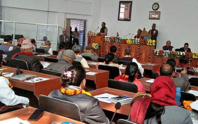 प्रदेश दुईमा समानान्तर प्रमुख जिल्ला अधिकारी हुने विधेयक